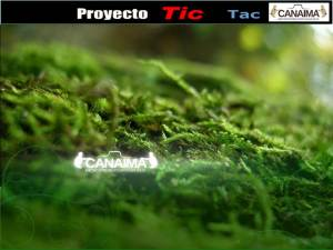 Fondo de escritorio Oficial de Linux Canaima TIC - TAC 2011