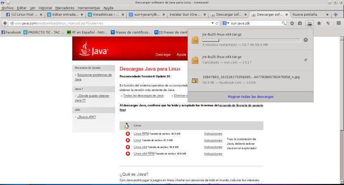Descargar software de Java para Linux - Iceweasel_041