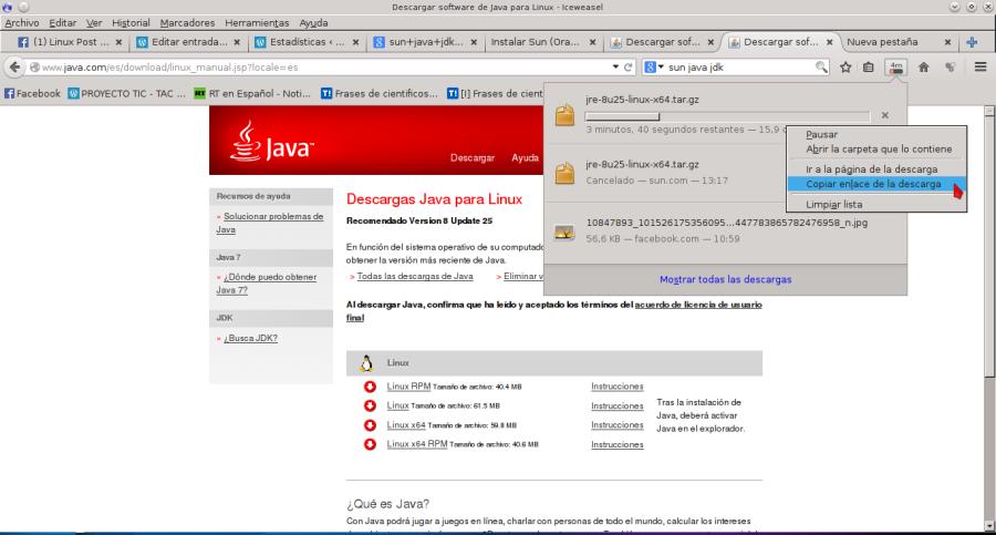 Descargar software de Java para Linux - Iceweasel_042