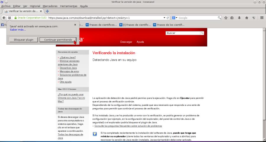 Verificar la versión de Java - Iceweasel_060